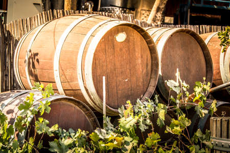 Wooden barrels for wine in the courtyard of the Tura Winery, Israel Stock Photo