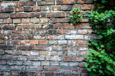 Fragment of the wall enclosing the Jewish ghetto during World War II in Warsaw, Poland