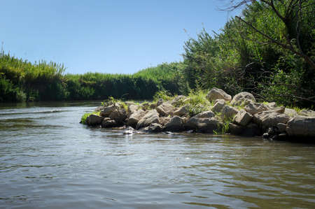 rushy: View of the slow river flow and the bushes growing along the banks of the Jordan River, Israel Stock Photo
