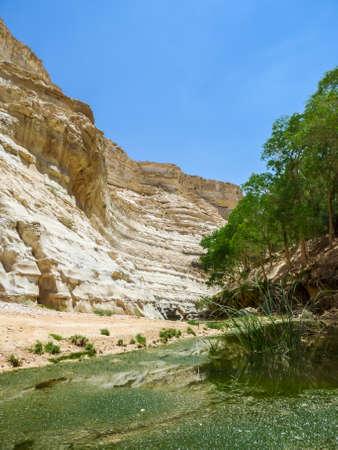 The En Akev, Nahal Zin near the kibbutz Sde Boker and Midreshet Ben-Gurion in Negev Desert, Israel