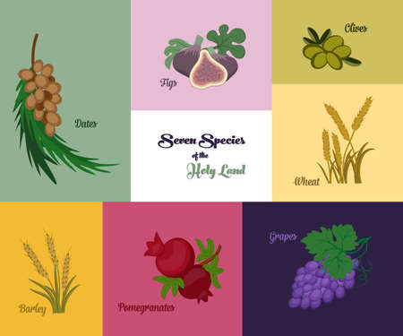 jewish holiday: Seven species of the Holy Land, two grains and five fruits, Jewish holiday Shavuot, vector illustration