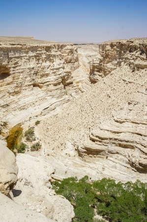 nahal: View of Nahal Zin near the kibbutz Sde Boker and Midreshet Ben-Gurion in Negev Desert, Israel Stock Photo