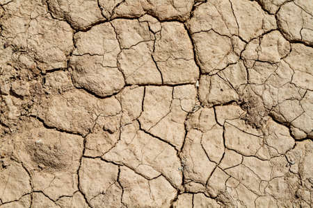 Soil background, dry chapped earth, cracks in the dried ground in Negev desert, Israel