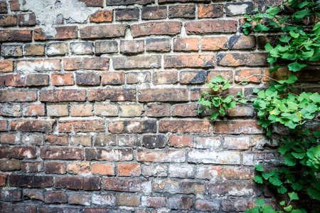 Fragment of the wall enclosing the Jewish ghetto during World War II in Warsaw, Poland Stock fotó