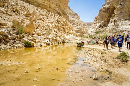 nahal: NEGEV DESERT, ISRAEL - NOVEMBER 24: The Ein Akev, Nahal Zin near the kibbutz Sde Boker and Midreshet Ben-Gurion in Negev Desert, Israel on November 24, 2016