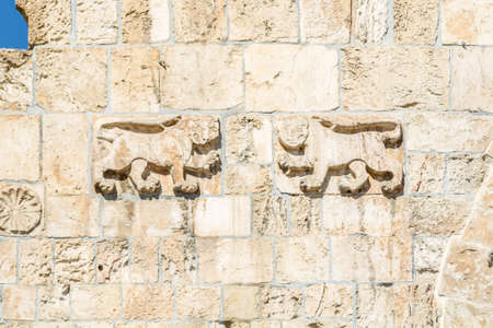 Stone lions, decorative details of the Lion Gate in Old City of Jerusalem, Israel