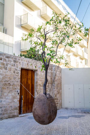 The Floating Orange Tree in Artists Quarter of Old Jaffa-Yaffo, Israel.