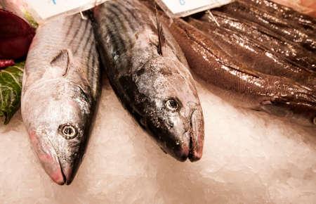 Fresh fish at Mercat de la Boqueria, Barcelona, Spain