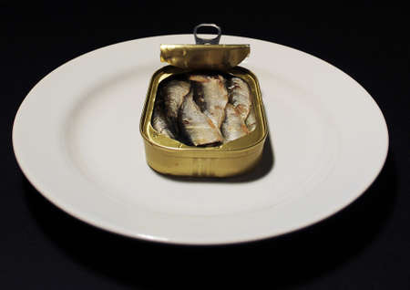 Open can of sardines on a isolated background