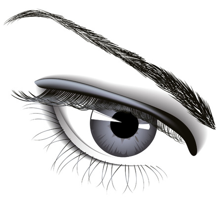 eyelashes: Woman eye, vector illustration,  file included Illustration