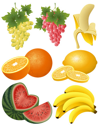 Fruit collection, vector illustration, EPSI file included Vector