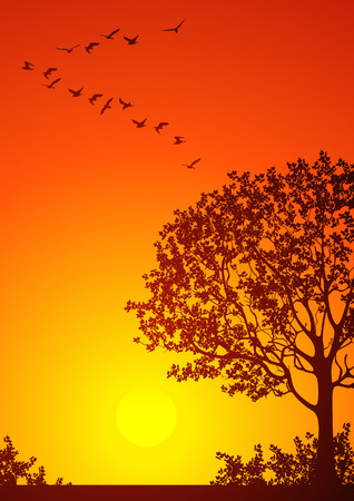 Autumnal landscape, vector illustration, EPS file included Stock Vector - 3563478