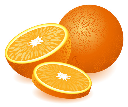 orange slice: Orange, vector illustration, EPS file included