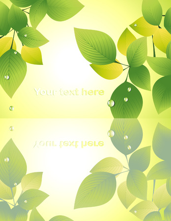 Leaf reflection on yellow background, vector illustration, EPS file included Vector