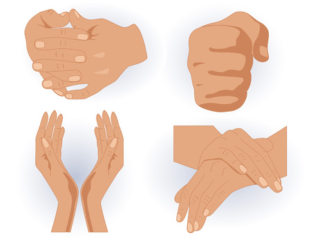 handclasp: Human hands, vector illustration, file included