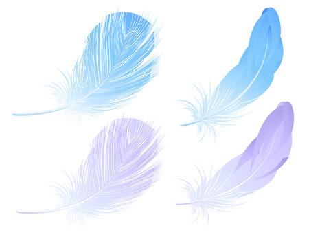 pluma: Conjunto de plumas, ilustraci�n vectorial, archivo EPS incluido
