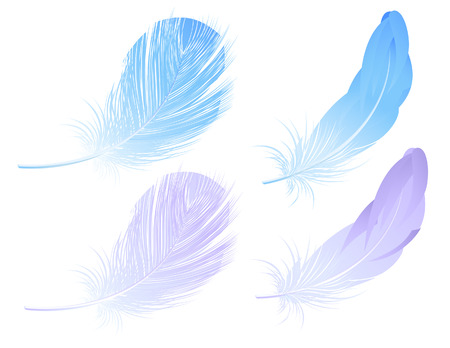 Feather set, vector illustration, file included Illustration
