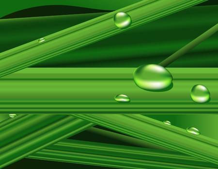 wallpapper: Verde erba, illustrazione vettoriale, inclusi file EPS