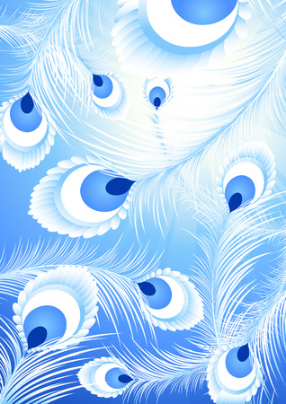 White peacock feather background,vector illustration, file included