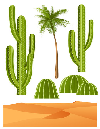 prickles: Cactus set, vector illustration, EPS file included