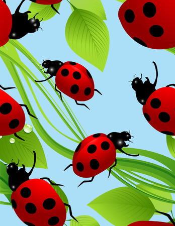 Ladybird seamless background, vector illustration, file included Vector