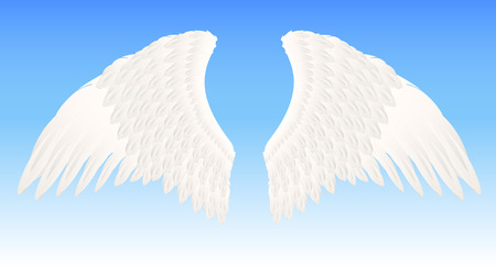 White angel wings, vector illustration, file included Ilustra��o