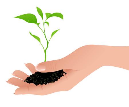 enten: Sprout in de menselijke kant vector afbeelding, bestand opgenomen