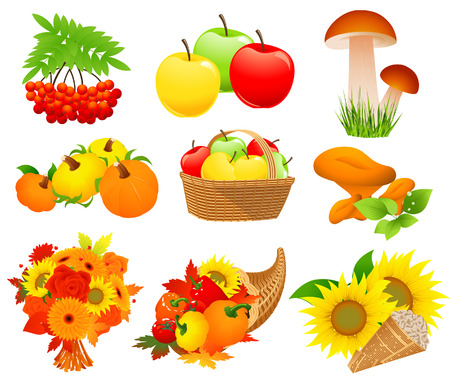 Autumn food set, vector illustration, EPS file included