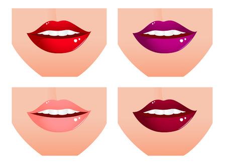 Woman lip set,   illustration,  Vector