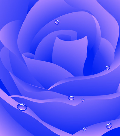 Blue beautiful rose background, Vector