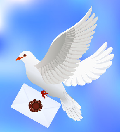 white dove: Dove with letter, vector illustration, EPS file included