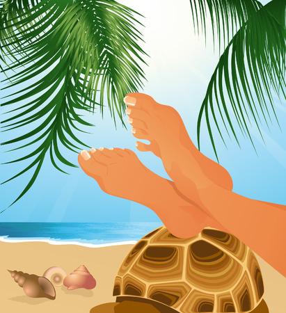 testa: Relax on the beach