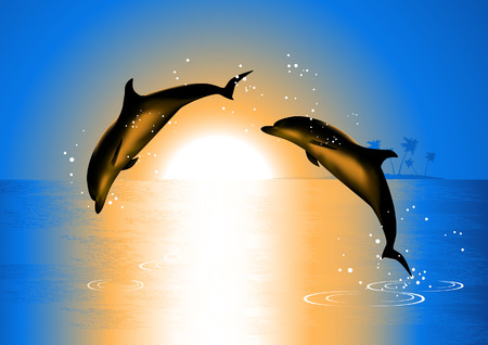 Dolphins in the sunset Vector
