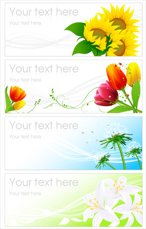 sunflower seeds: Flower backgrounds