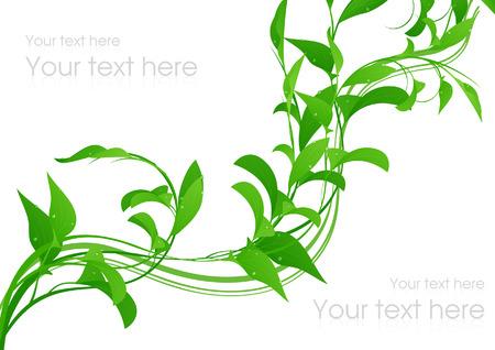 wallpapper: Green leaf curve