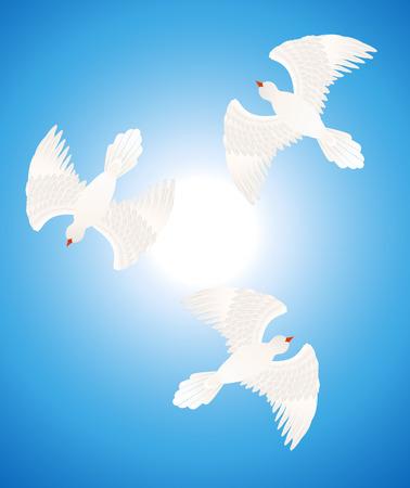 White doves Vector