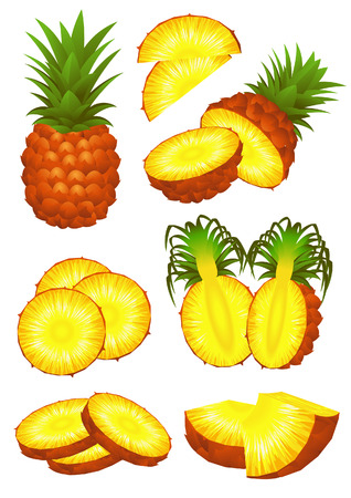 fruitage: pineapple piece set,  illustration, EPS and AI files included