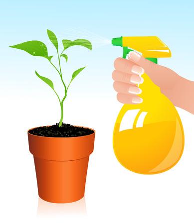 Leaf spray, illustration, Stock Vector - 7381199