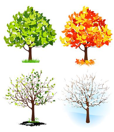 spring out: Cuatro �rboles de temporada, ilustraci�n  Vectores