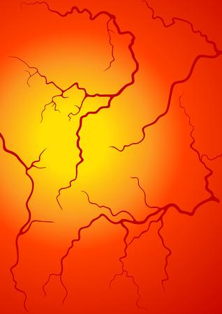 vasos sanguineos: Vasos sangu�neos, ilustraci�n  Vectores