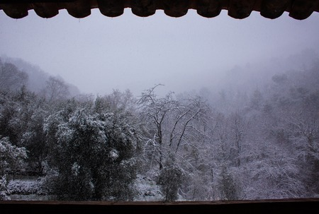 Snowing in Vence, south of France, close to Alpes Banque d'images - 111062606
