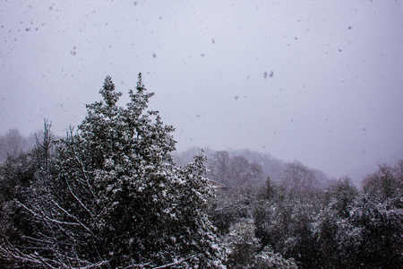Snowing in Vence south of France close to Alpes Banque d'images - 111525410