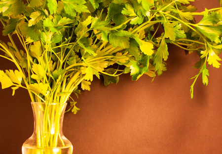 a bandle of parsley in a carafe of water Banque d'images - 122883473