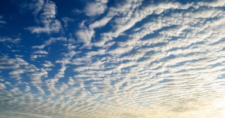 troposphere: cirrus clouds over the forest at sunset.