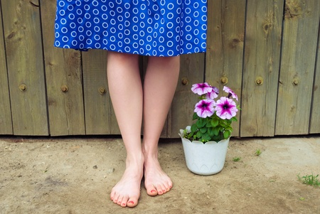 fine legs: female legs against a wooden wall, next to the flowers in the pot.