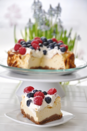 Cheesecake with Berries Stock Photo - 18223152