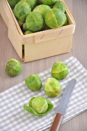 cabbage patch: Brussels sprouts Stock Photo