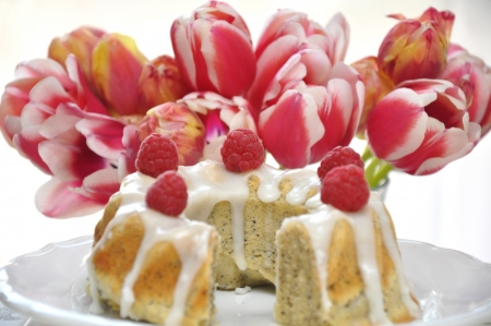 Raspberry Cake Stock Photo - 18307311