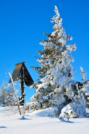 Winter landscape in mountains of Austria Stock Photo - 18399588