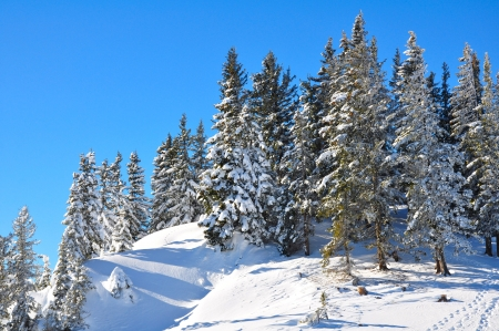 serbia xmas: Winter landscape in mountains of Austria Stock Photo